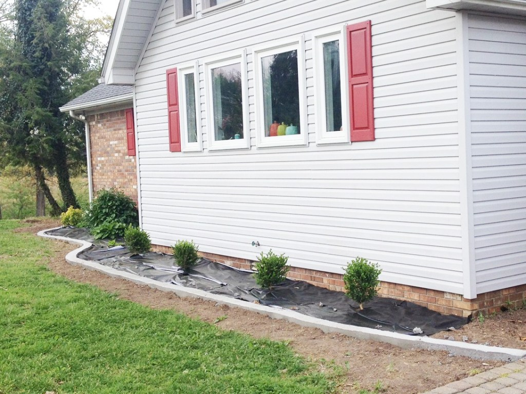 Update your landscape and improve curb appeal with concrete edging and new boxwood bushes