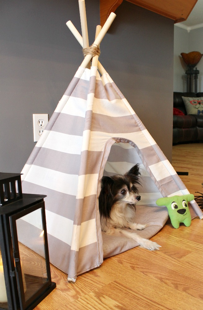 Super easy tutorial for how to sew a DIY dog tent with striped or patterned fabric!