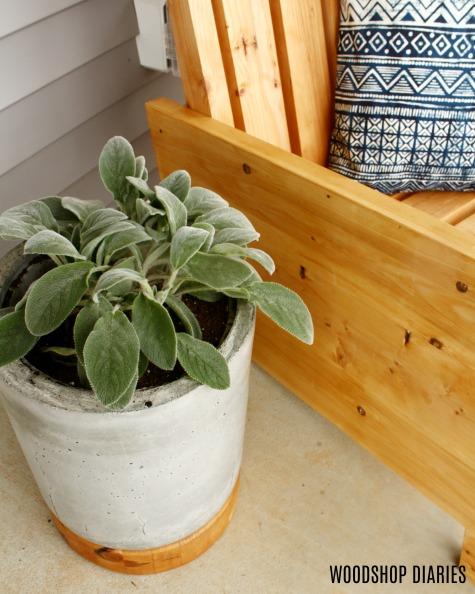 DIY Concrete planter pot with wooden base