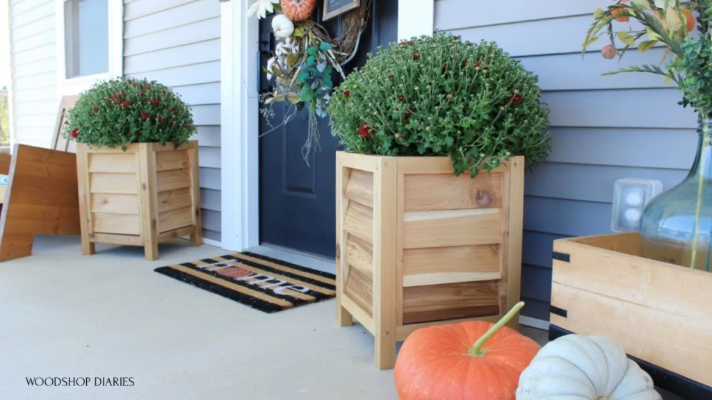 Two cedar louvered planter boxes on each side of front door with red mums and pumpkins