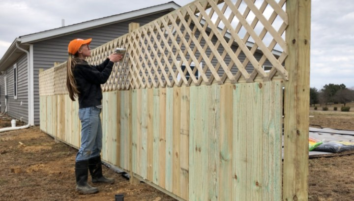 Stapling lattice panels onto back side of privacy fence