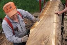 Pay Mill Lumber - Woodshop