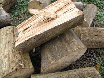 sycamore firewood