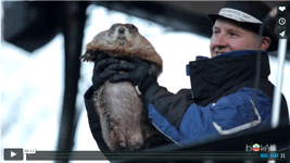 Groundhog – Every day is Groundhog Day in Woodstock, IL!