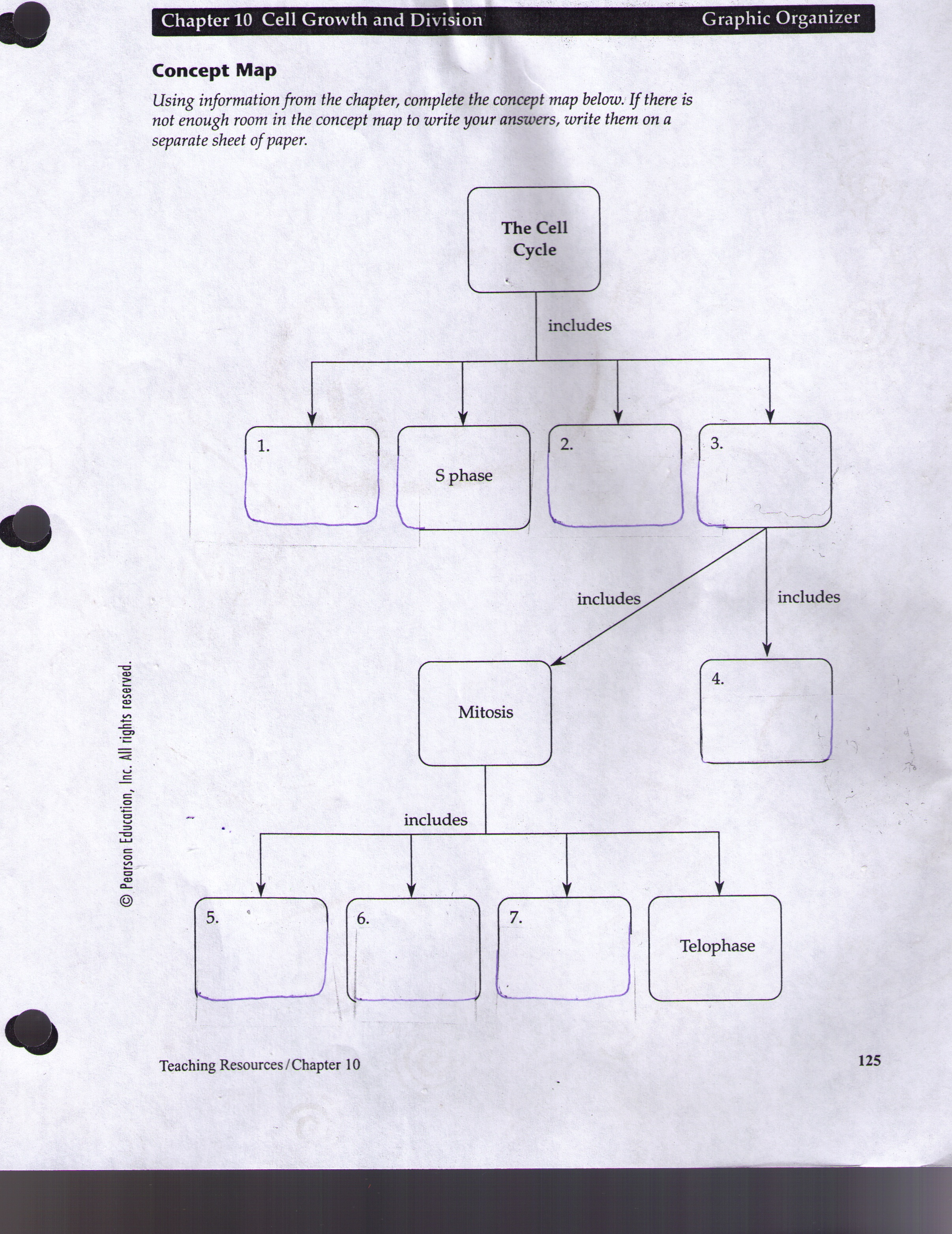 Worksheet The Selection Process Biology Chapter 11 Answers