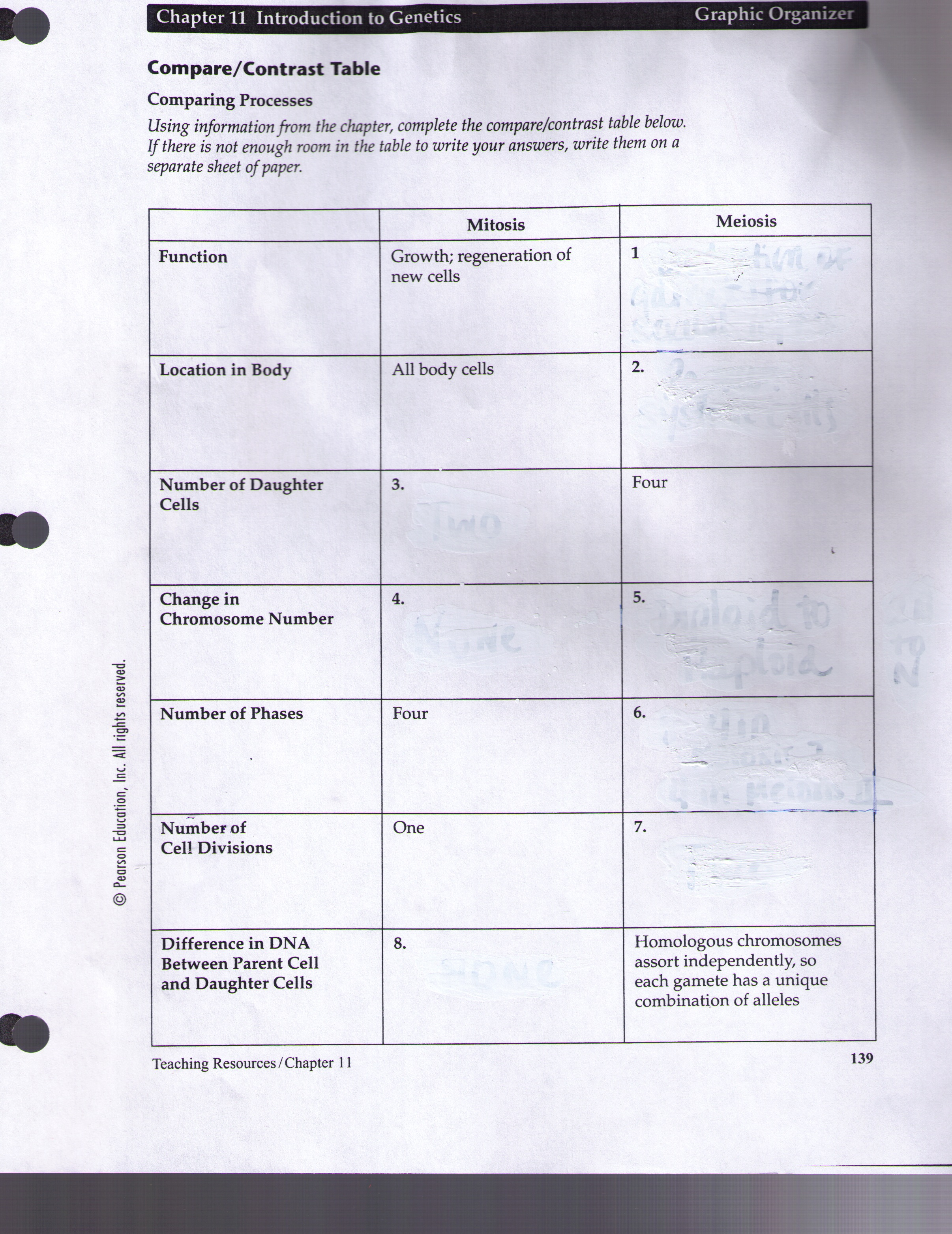 32 Section 31 The Rock Cycle Worksheet Answers