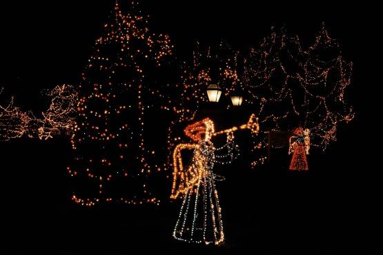 Holiday lights_50474