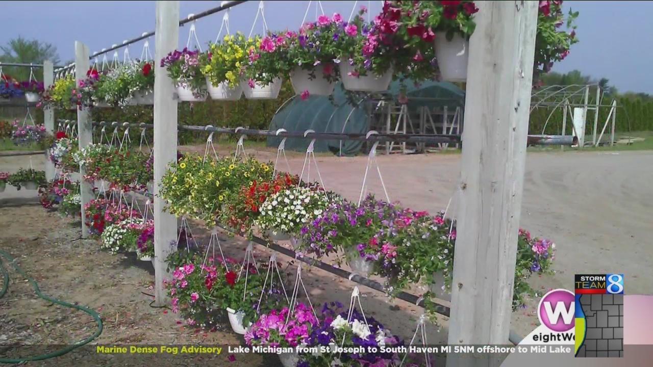 Time_to_start_Spring_planting_0_20180523182419