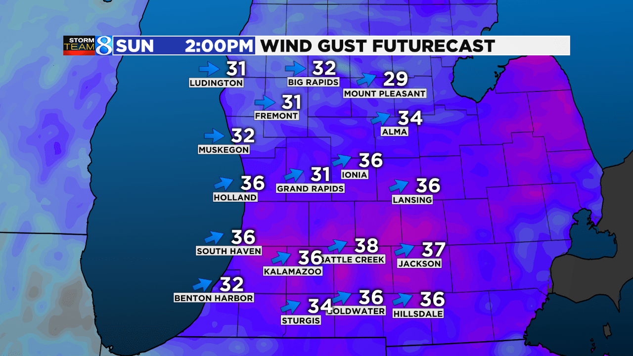 Wind Gust Futurecast_1552114264400.png.jpg