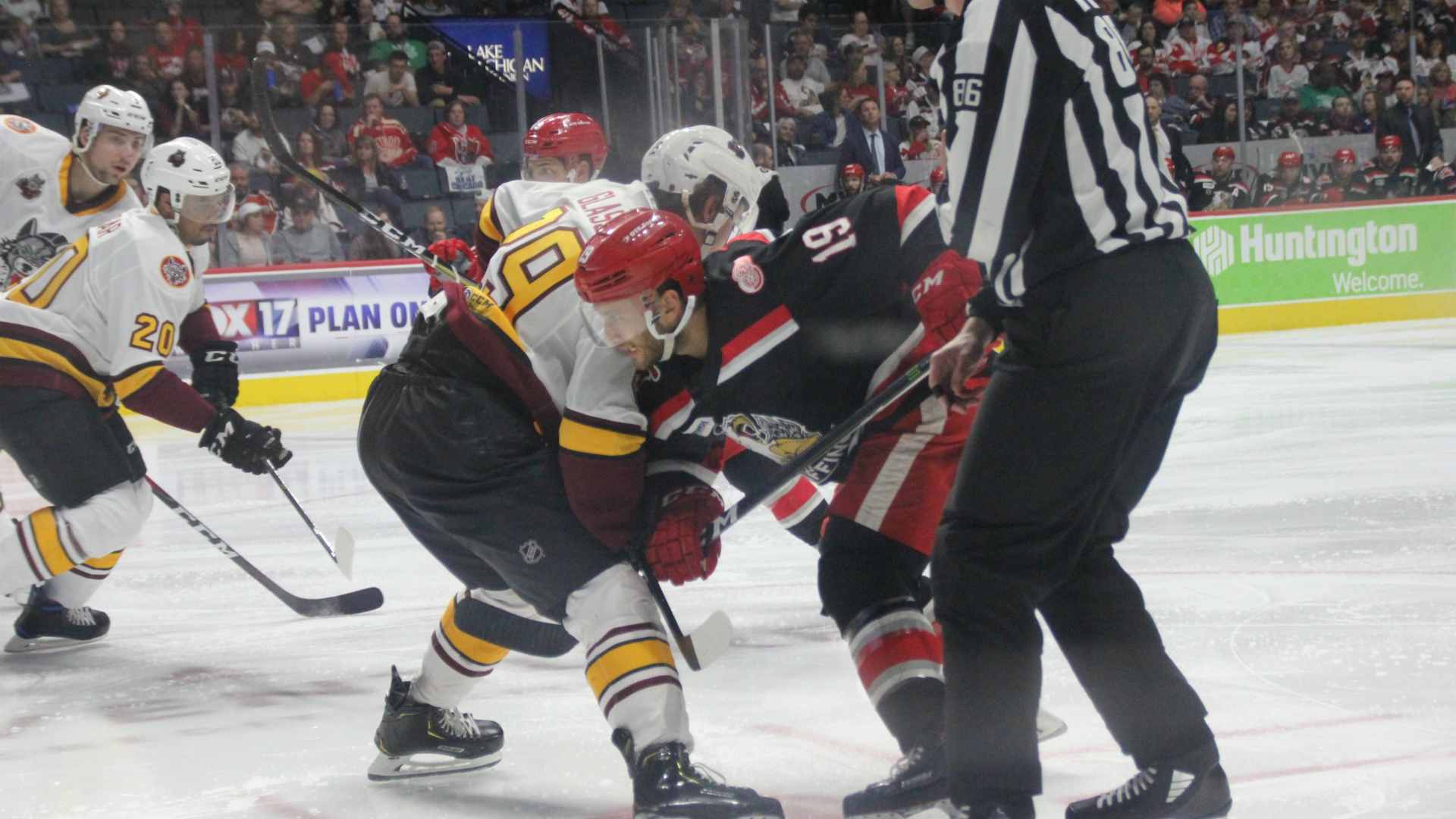 grand rapids griffins chicago wolves game 4 042419_1556160454572.JPG.jpg