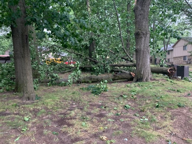 A photo of storm damage near the Alpine Slopes Apartments in Comstock Park on July 20, 2019. (Courtesy of Ricky Malott)