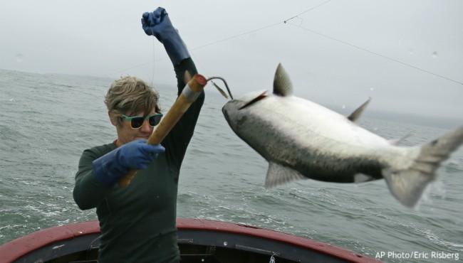 Woman hooks salmon on line