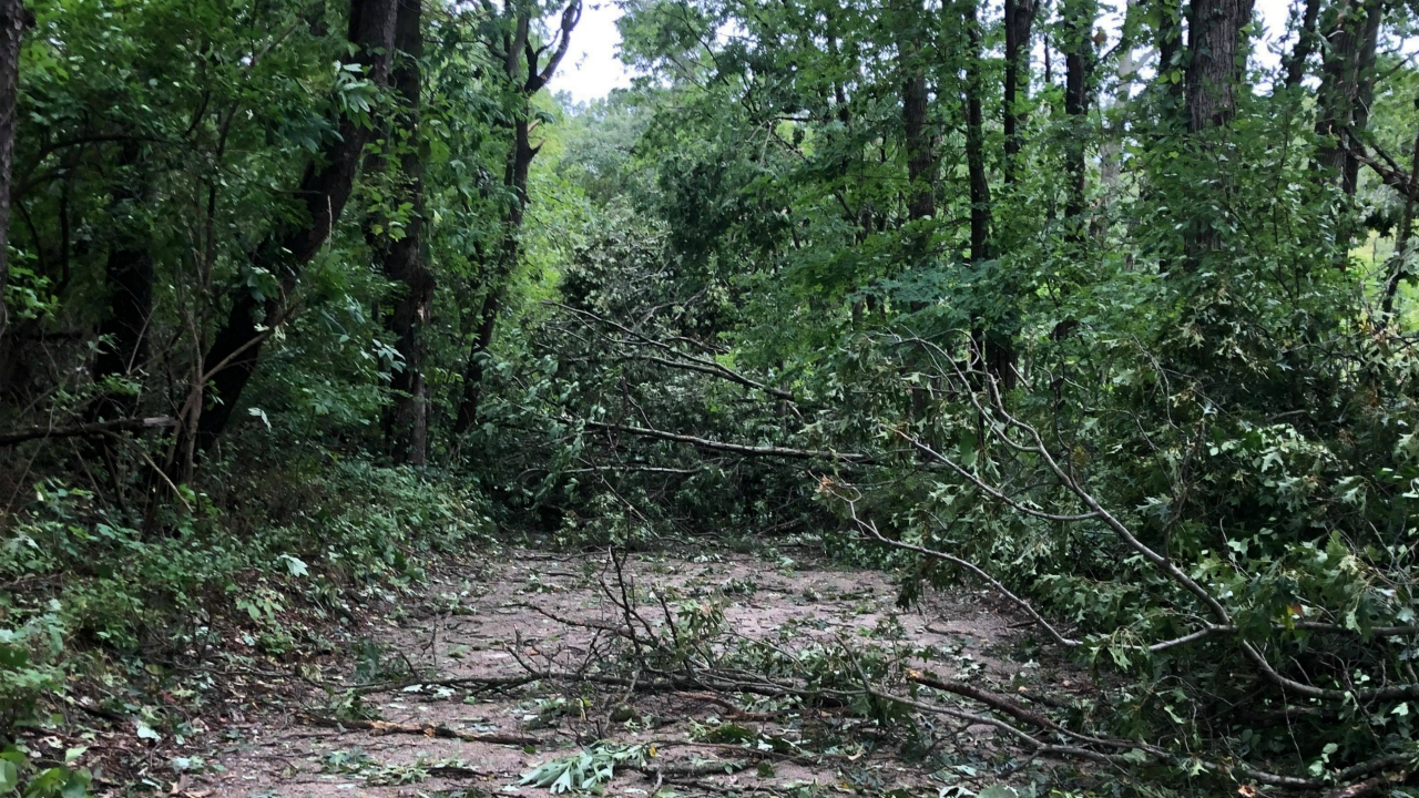 ada township dogwood court storm damage