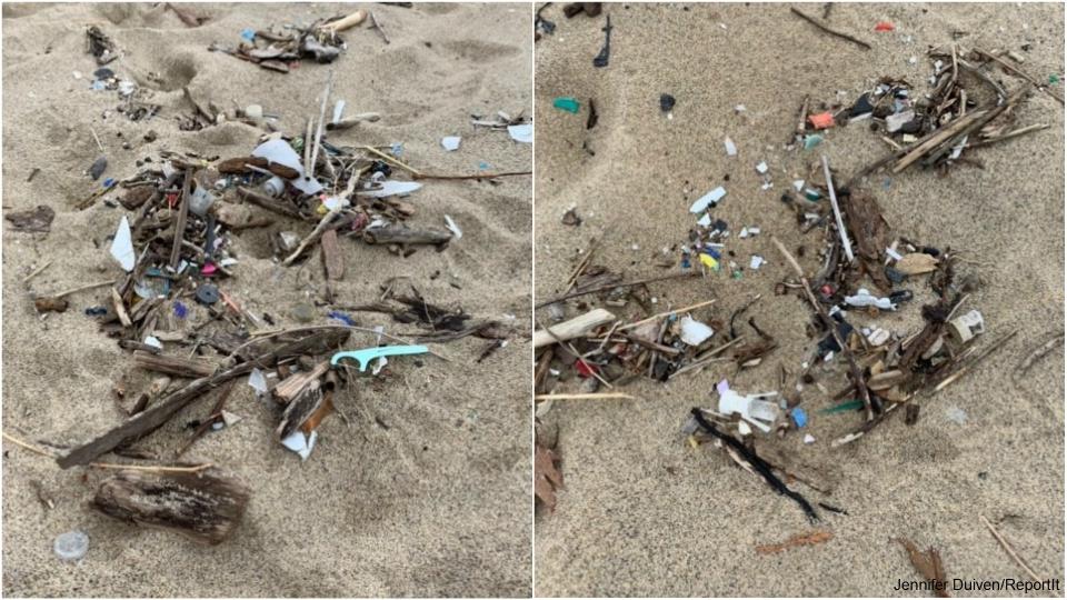 saugatuck beach trash
