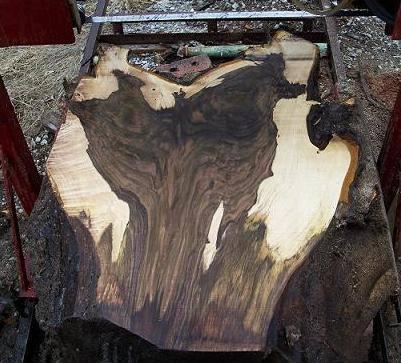 Black Walnut Wood Value | WoodWorking