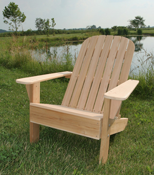 paint for adirondack chairs bean bag chair cost how should i my woodworking blog