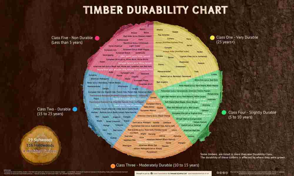 medium resolution of infographics timber durability chart and what affects the natural durability of wood