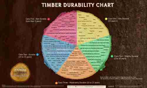 small resolution of infographics timber durability chart and what affects the natural durability of wood