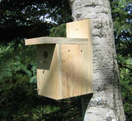 easy wooden bird house plans