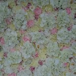 Flower wall hire north west