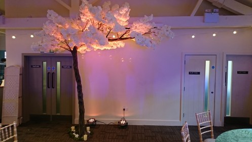 thornton manor blossom tree hire