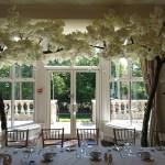 blossom tree weddings