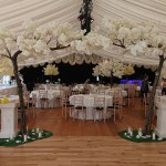 Canopy trees Lakeside Marquee