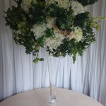 Extra-large-white-hydrangea-and-foliage-3