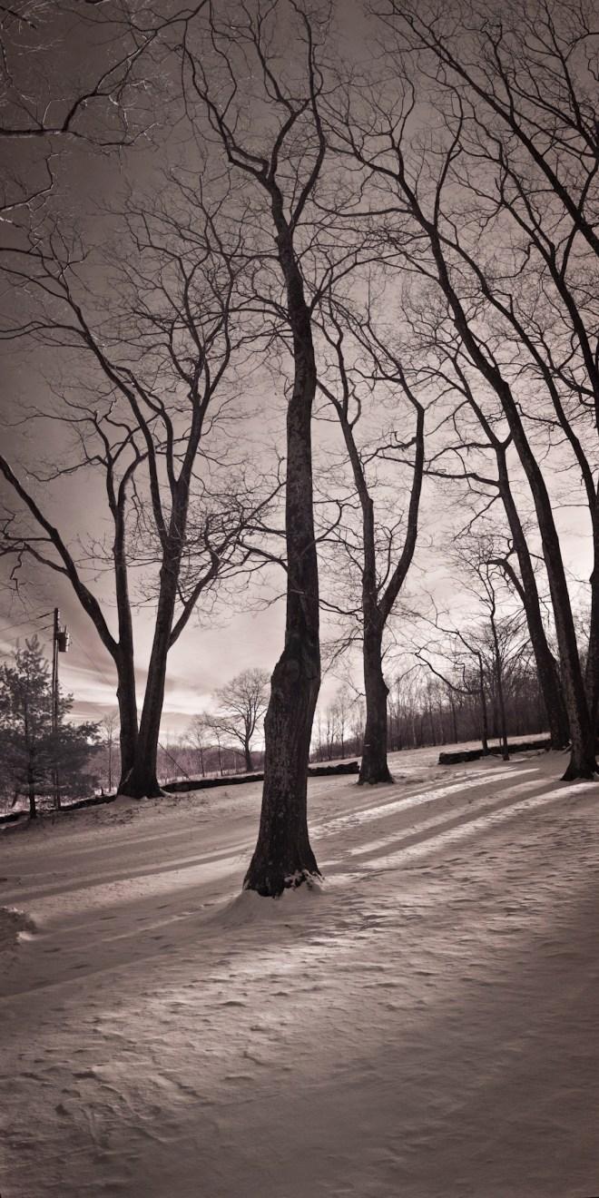 Warren, after a snowfall