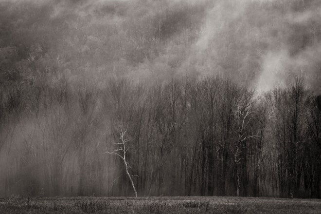 Ground fog Warren CT