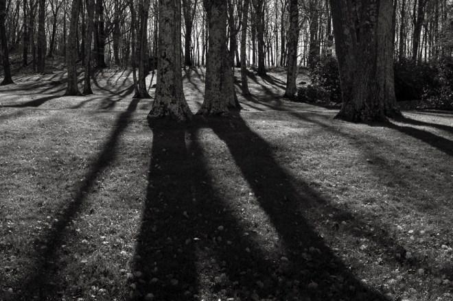 Monumental shadow