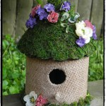 Moss Covered Hut