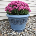 Makeover for your flower pots
