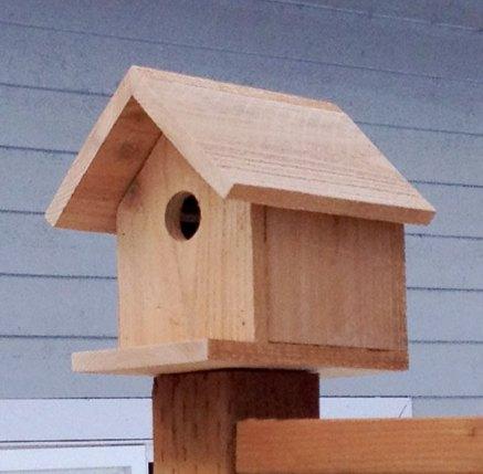 2 dollar birdhoust