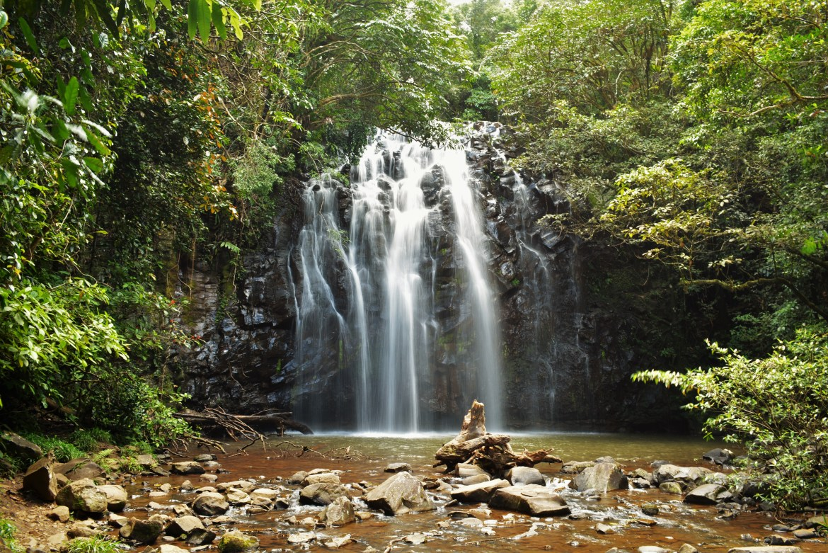 Chasing waterfalls in the atherton tablelands woody for The atherton