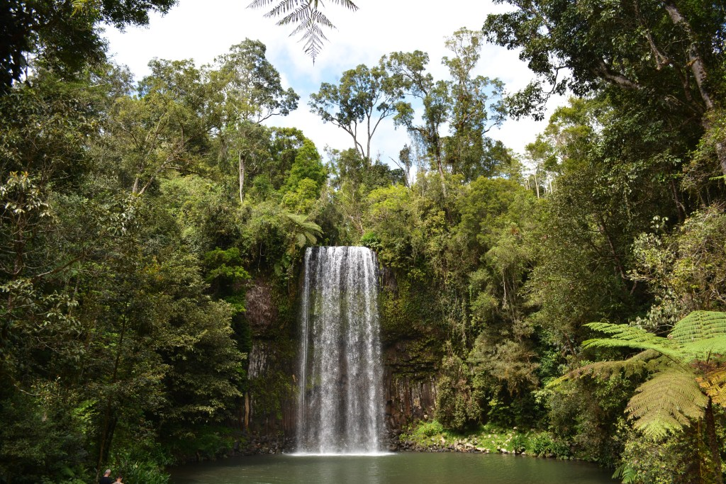 millaa millaa waterfall