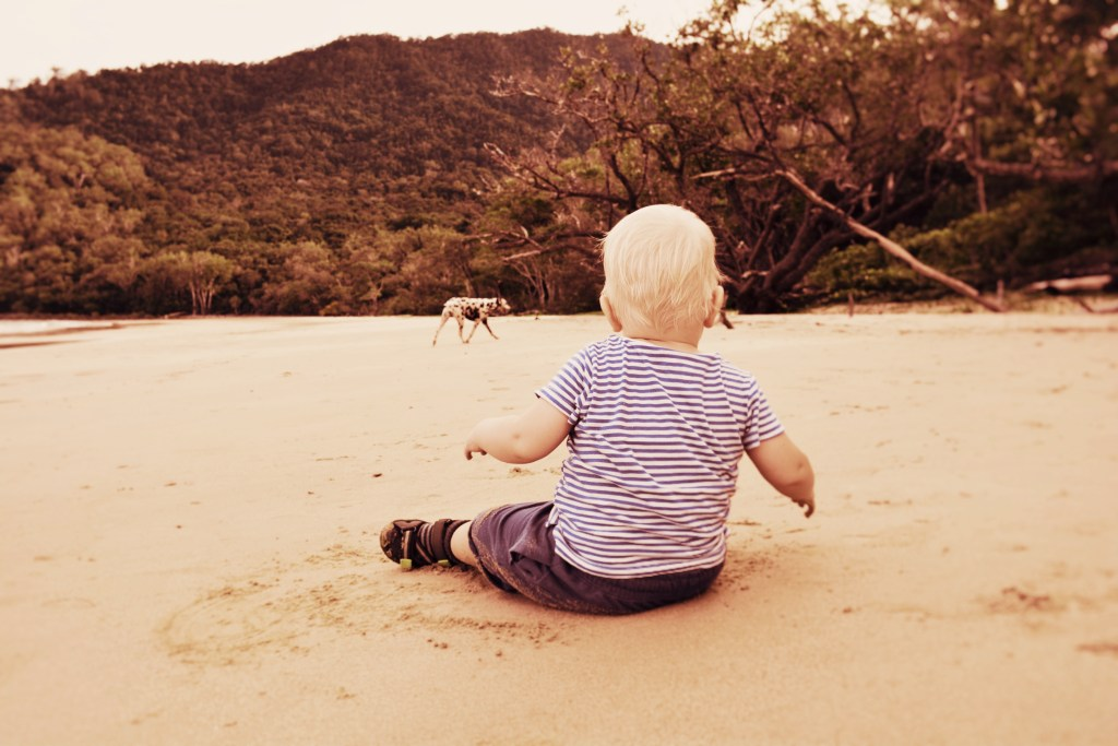 www.woodyworldpacker Australia Queensland Daintree Cow Bay Beach