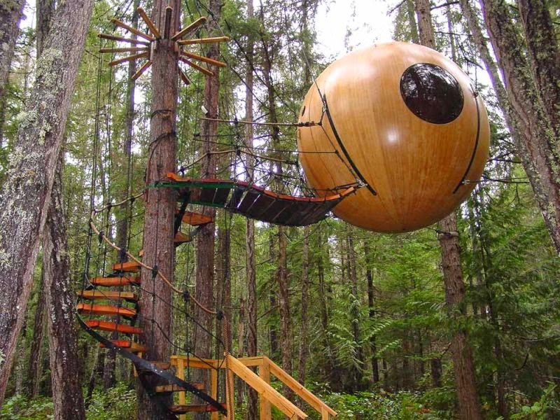 14 Tree House Ideas Woodz