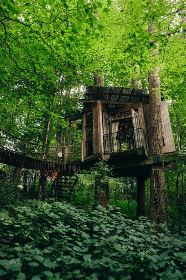 mind body and spirit treehouses