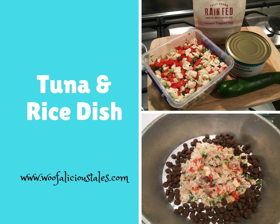 photo collage of tuna veggies rice and zucchini