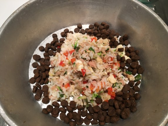 metal dog dish with tuna & rice and dry food