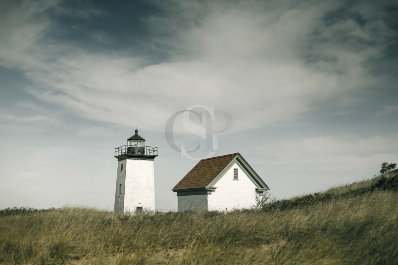 Point Light