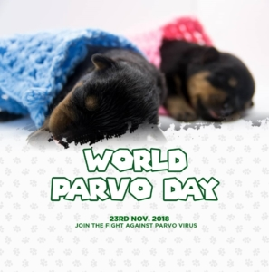 Cynology week and world parvo day