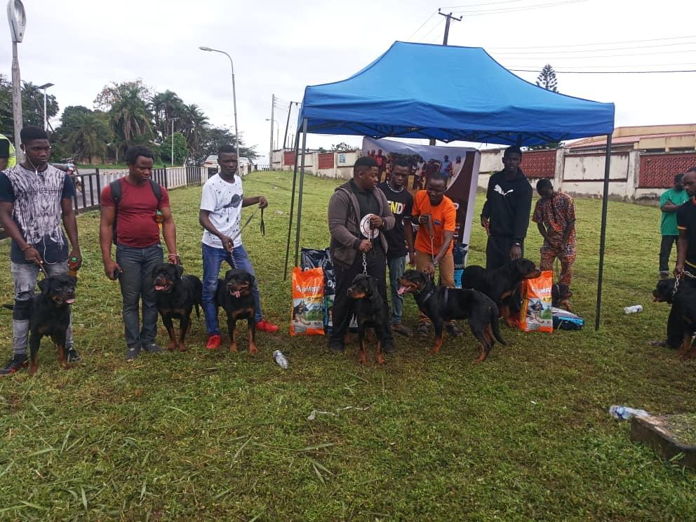 Pacesetter Rottweiler Club