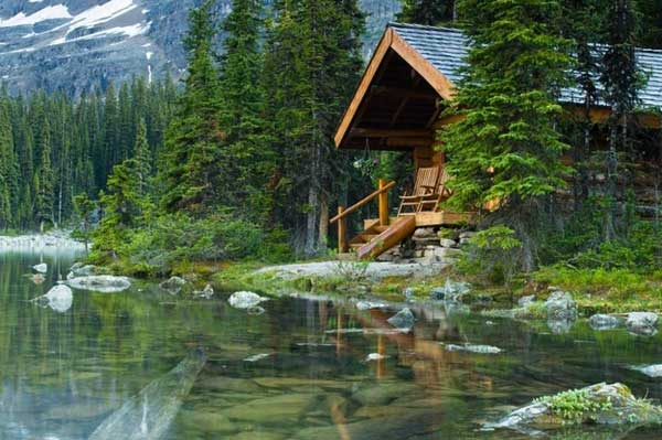 23 Breathtaking Forest Fringed Wood Cabins