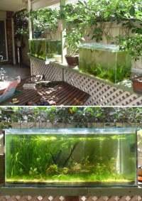 22 Small Garden or Backyard Aquarium Ideas Will Blow Your ...