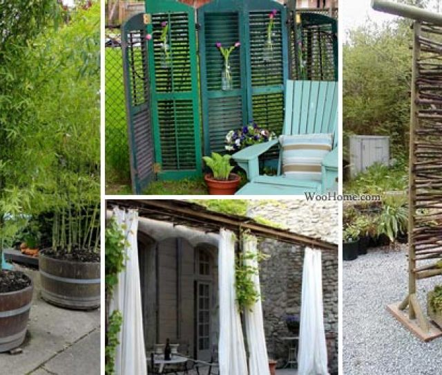 Fascinating And Low Budget Ideas For Your Yard And Patio Privacy
