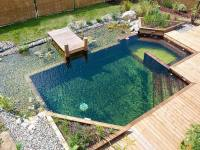 24 Backyard Natural Pools You Want To Have Them ...