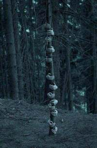 Top 21 Creepy Ideas to Decorate Outdoor Trees for ...
