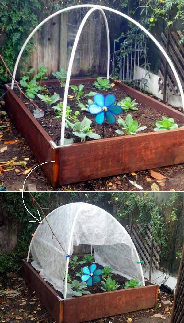 17 Simple Budget Friendly Plans To Build A Greenhouse